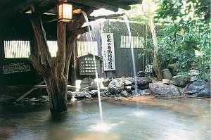 いこい旅館名湯秘湯百選滝の湯