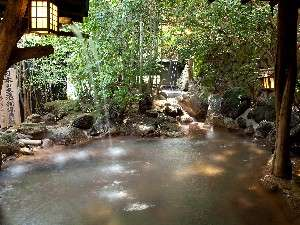 いこい旅館日本名湯秘湯百選滝の湯