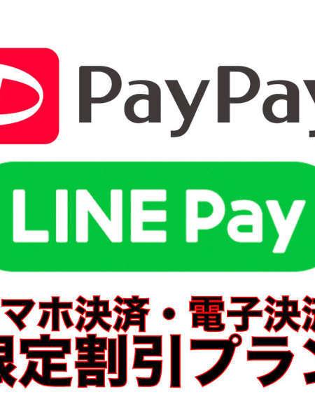 paypay ビジネス