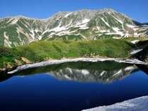 立山国際ホテル