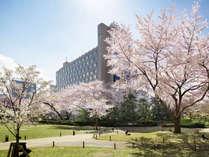 ザ・プリンス さくらタワー東京(さくらタワー)