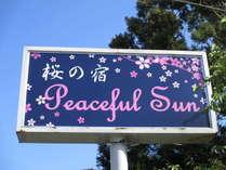 桜の宿 Peaceful Sun
