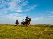 大草原の小さな牧場 エル・パティオ