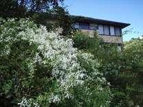 花と味のお宿 椿道旅館